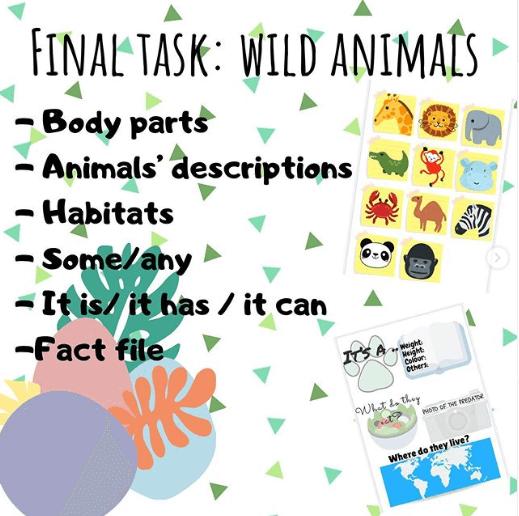 final-task-wild-animals
